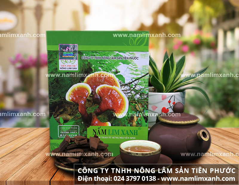 Giá cả nấm lim xanh tại Đà Nẵng và tìm mua nấm lim xanh như thế nào?