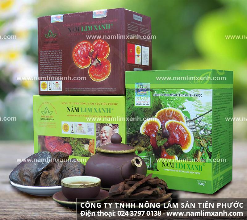 Giá các loại nấm lim xanh tại Đà Nẵng và đặc điểm nấm lim xanh thật