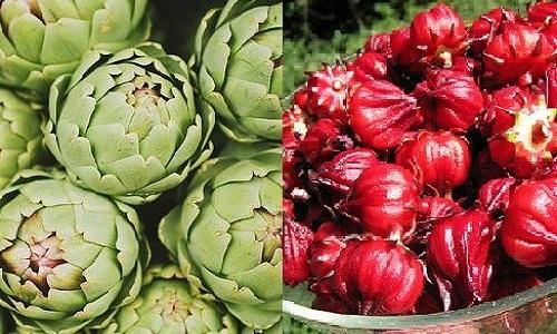 Atisô được trồng rất ở Việt Nam và chúng giúp ngăn ngừa ung thư hiệu quả