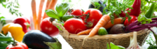 Chế độ ăn giúp tăng sức cho bệnh nhân ung thư