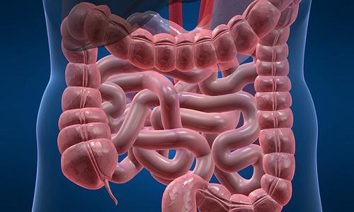 dấu hiệu nhận biết bệnh viêm đại tràng xích-ma