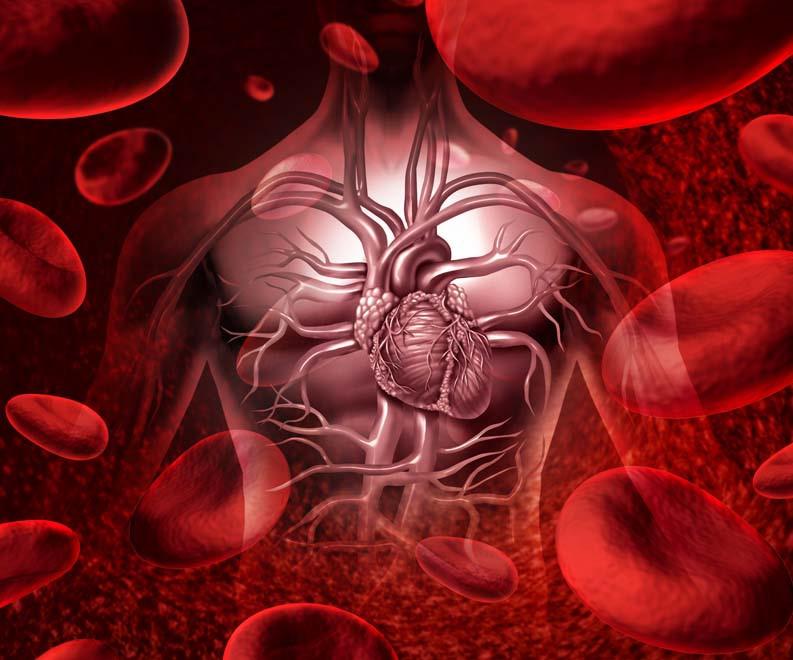Phương pháp điều trị ung thư máu bằng tái kích hoạt tự thực