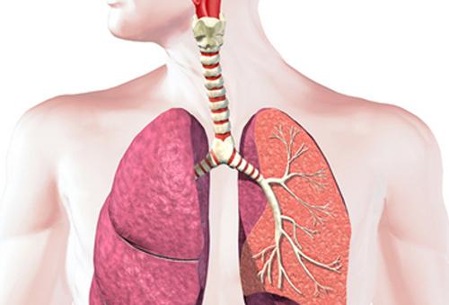 Erlotinib liệu pháp cho bệnh nhân ung thư phổi