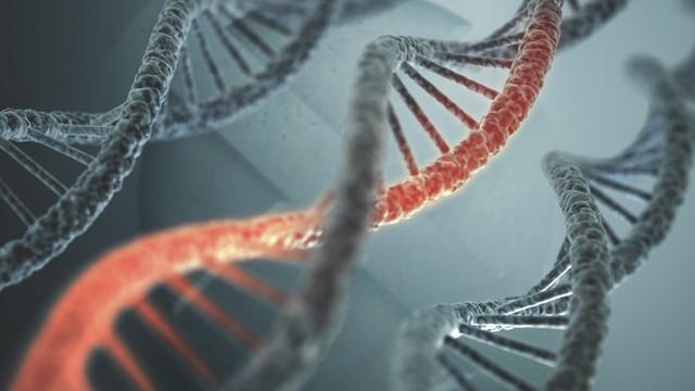 Đột biến gen chính là nguyên nhân gây nên căn bệnh ung thư