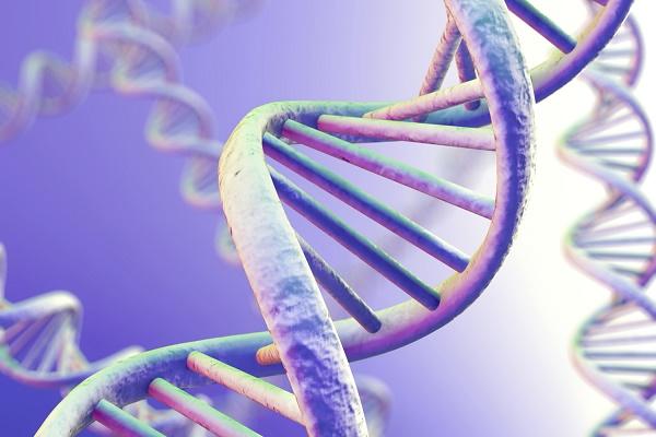 Gene đột biến BRIP1 khiến phụ nữ bị ung thư buồng trứng