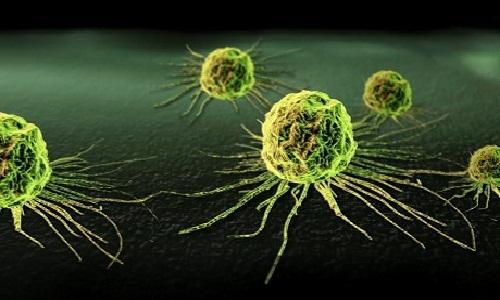 Hỗ trợ điều trị khỏi ung thư bằng tế bào gốc