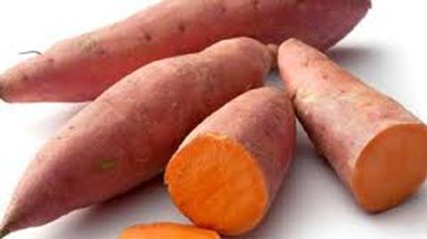 Khoai lang thực phẩm chống ung thư tốt nhất