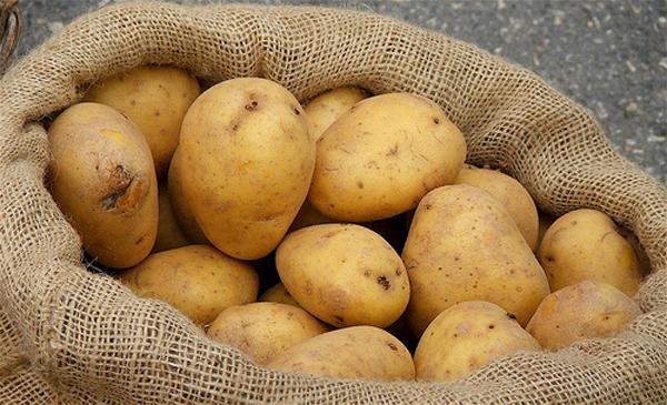 ngừa ung thư bằng khoai tây