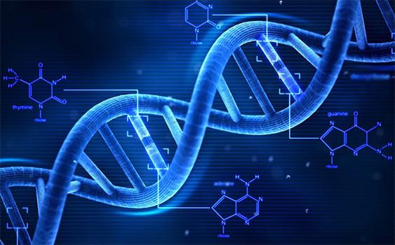 Nguyên nhân gây ung thư là do sai sót trong việc sao chép ADN
