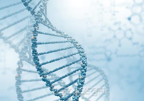 Lượng gen Gen BRCA1 tăng đột biến là nguyên nhân gây ung thư tử cung