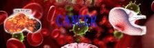 vật dụng quen thuộc gây ung thư