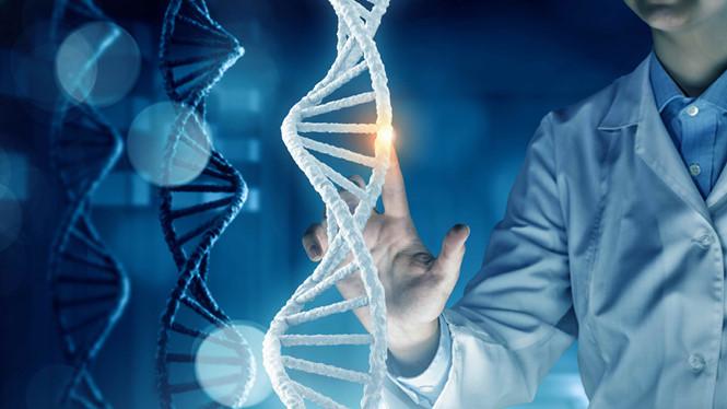 Các nhà khoa học đang nghiên cứu để điều trị ung thư tuyến tiền liệt