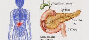 Thuốc điều trị ung thư tuỵ tạng