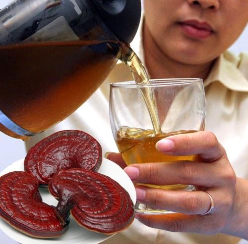 Đun lấy nước uống là cách sử dụng nấm lim xanh Quảng Nam tốt nhất