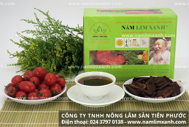Công dụng nấm lim xanh giải độc gan tác dụng nấm lim rừng giải độc gan