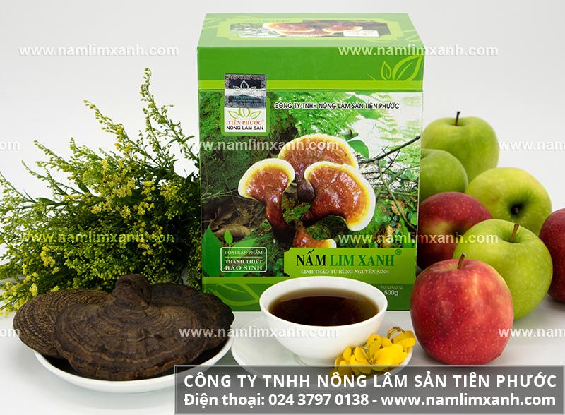 Địa chỉ bán nấm lim xanh tại Hà Nội và giá bán nấm lim xanh tại Hà Nội