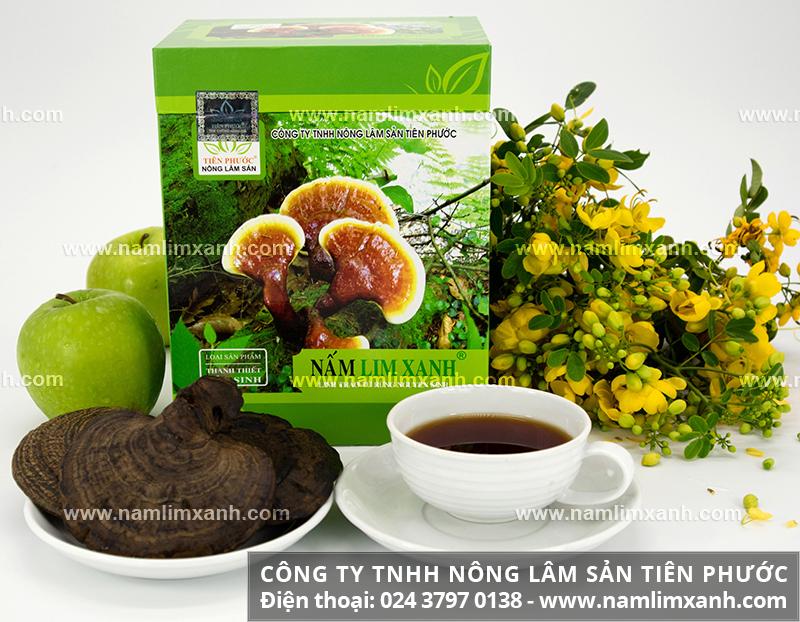 Dùng nấm lim xanh như thế nào cách dùng nấm lim xanh tự nhiên hãm trà