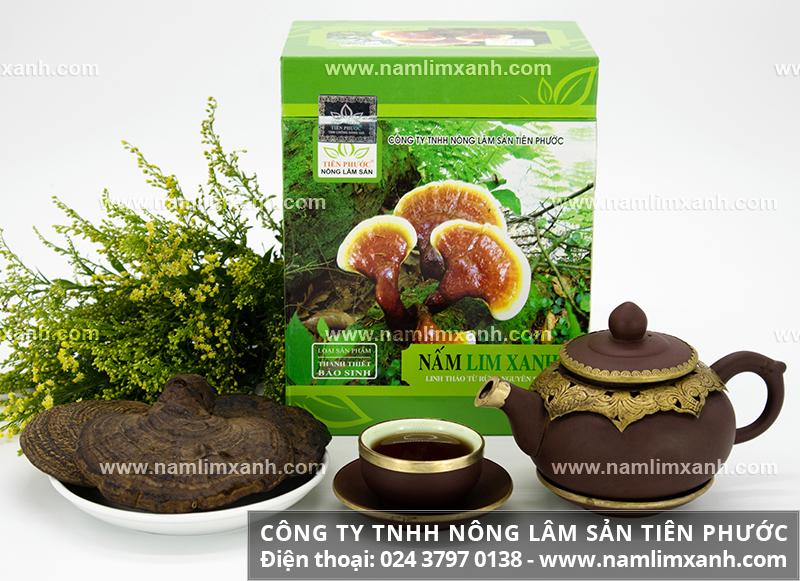 Mua nấm lim xanh tại địa chỉ uy tín ở Hà Nội nơi mua nấm lim tại Hà Nội