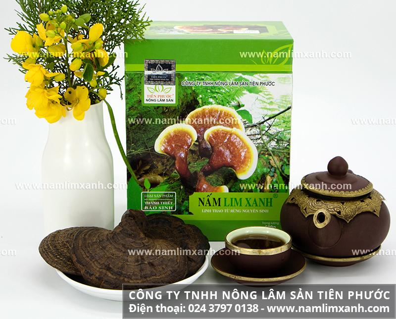 Nấm lim xanh tự nhiên của Lào trị bệnh ra sao tác dụng nấm lim trị bệnh
