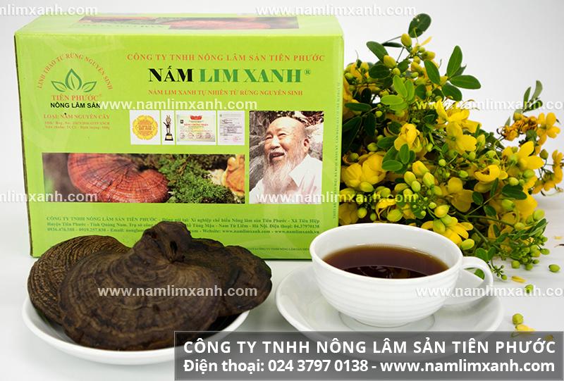 Sử dụng nấm lim xanh pha trà và cách hãm trà nấm lim rừng tự nhiên