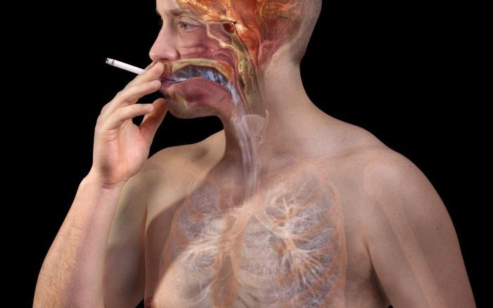 Thuốc lá - thủ phạm nguy hiểm gây ung thư phổi