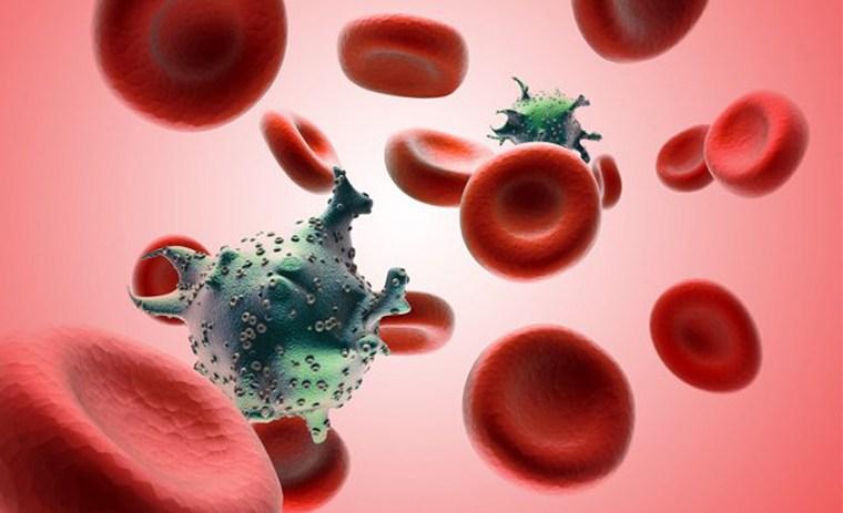 Những lưu ý về ghép tế bào gốc trong điều trị ung thư máu