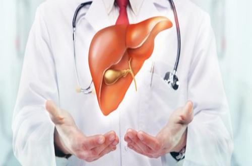 Cách điều trị gan nhiễm mỡ cần xuất phát từ nguyên nhân gây bệnh