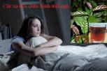 Nước lá xạ đen có tác dụng chữa chứng mất ngủ.