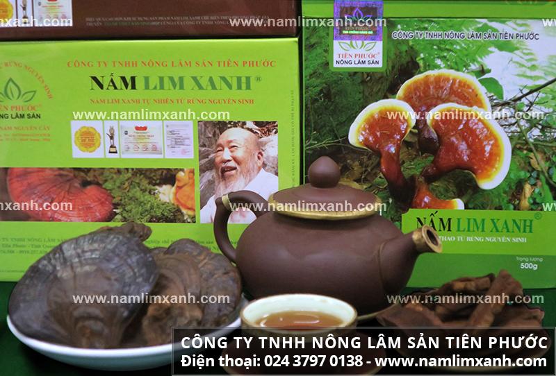 Địa chỉ thu mua nấm lim xanh uy tín tại Hà Nội và nơi mua nấm cây lim