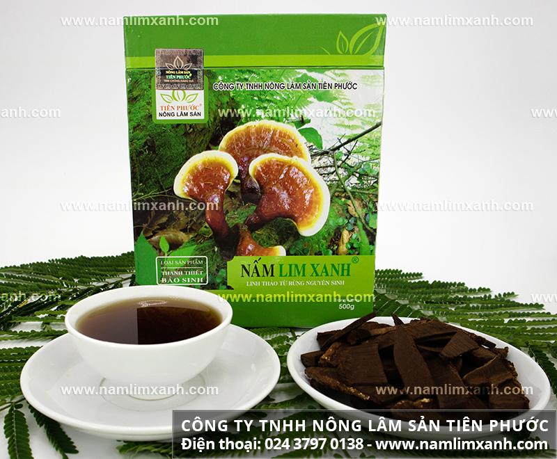 Hướng dẫn chọn mua nấm lim rừng tốt nhất và cách chọn nấm lim xanh