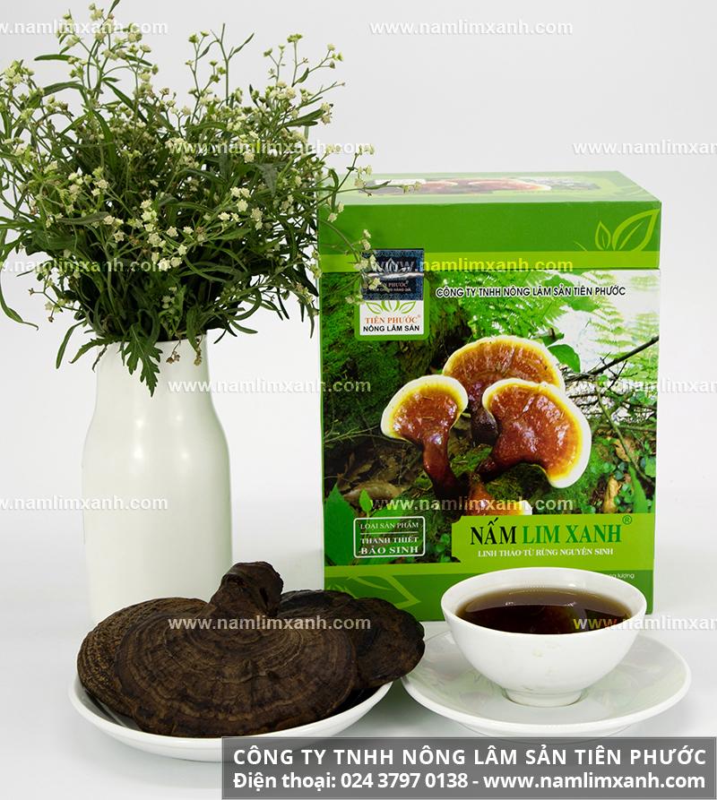 Hướng dẫn hãm trà nấm lim xanh và cách chế biến nấm cây lim xanh