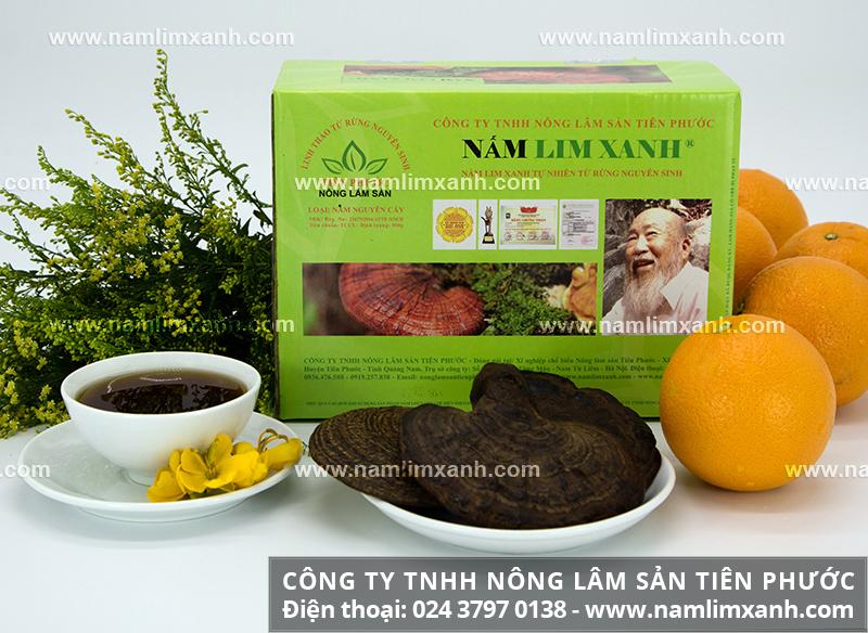 Mua nấm lim xanh chính gốc ở đâu và mua nấm lim xanh tại Đà Nẵng