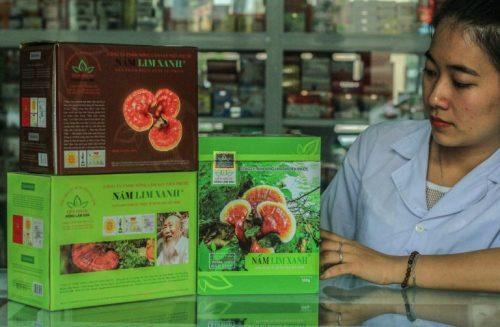 Mua nấm lim xanh Tiên Phước tại các cửa hàng, đại lý được ủy quyền phân phối, hoặc hiệu thuốc.