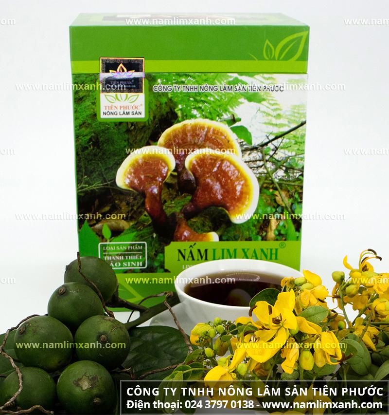 Nấm lim xanh rừng là gì và tác dụng của nấm lim xanh rừng tự nhiên