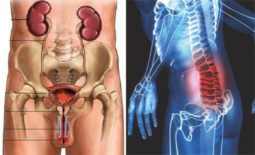 Ung thư tuyến tiền liệt di căn xương