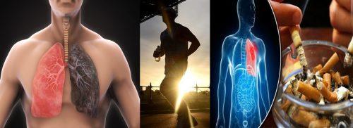 Nguyên tắc phòng tránh ung thư phổi bằng lối sống lành mạnh