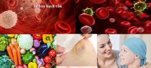 Ung thư máu và những vấn đề liên quan